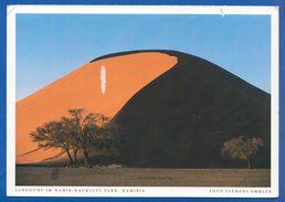 Namibia; Sanddüne Im Namib - Namibia