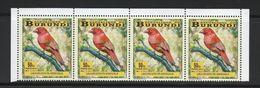 9] Bande De 4 ** Strip Of 4 ** Burundi Oiseau Bird Amarante Passereau Firefinch Passerine Lagonosticta Senegala - Burundi
