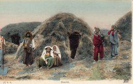 Afrique  Gourbi - Cartes Postales