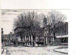 01 THOISSEY Autrefois Place Du College Grande Rue 1900 Reproduction Carton Format 19x13 Cm Illustrateur Poizat - France