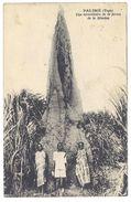 Cpa Togo - Palimé - Une Termitiaire De La Ferme De La Mission - Togo
