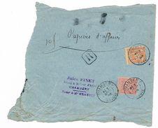 40 C N° 94 Et 50 C N° 98 Sage Sur Fragment De Papier D'affaires Recommandé . Chambery 1896 - Postmark Collection (Covers)