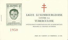 Carnet No. 5a Tuberculose 1950, Nouveau En Bleu - Blocchi & Foglietti
