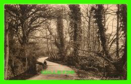 BRAMSHOTT, SURREY, UK - ROAD TO LIPHOOK -  F. FRITH & CO LTD - - Surrey