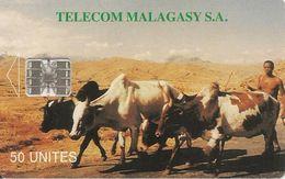 CARTE +PUCE-50U--SC7-MADAGACAR-ZEBUS-V°Au COEUR De La COMPETITION-  N° Rouge En Bas A Gauche-TBE - Madagascar