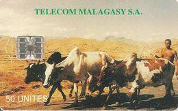 CARTE +PUCE-50U--SC7-MADAGACAR-ZEBUS-V°Au COEUR De La COMPETITION- Sans N°-TBE - Madagascar
