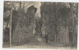 SAINT COULOMB Les Ruines Du Plessis Bertrand - Autres Communes