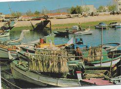 Portugal - Olhão - Barcos De Pesca . - Faro