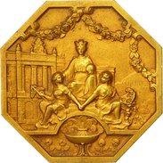 France, Medal, Chambre De Commerce , Alpes Maritimes, Charles, SUP+, Gilt Bronze - France