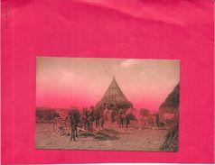 CPA COLORISEE A IDENTIFIER -  Construction De Hutte - Edit Brunner Et Cie ZURICH - BORD1512 - - Cartes Postales