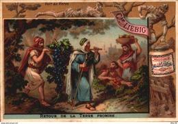 1 Chromos Liebig - S 159 - Biblique - Bible - Terre Promise - Ancien Testament - Bill-825 - R/V - Liebig