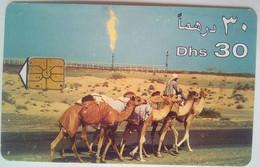 Dhs 30 Camels - United Arab Emirates