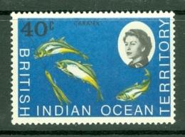 British Indian Territory (BIOT): 1968/70   QE II - Marine Life   SG21    40c   MNH - British Indian Ocean Territory (BIOT)