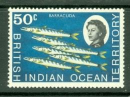 British Indian Territory (BIOT): 1968/70   QE II - Marine Life   SG23    50c   MNH - British Indian Ocean Territory (BIOT)