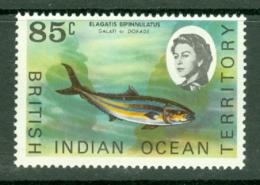British Indian Territory (BIOT): 1968/70   QE II - Marine Life   SG24a    85c   MNH - British Indian Ocean Territory (BIOT)