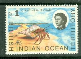 British Indian Territory (BIOT): 1968/70   QE II - Marine Life   SG25    1R   MNH - Territoire Britannique De L'Océan Indien