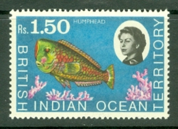 British Indian Territory (BIOT): 1968/70   QE II - Marine Life   SG26    R1.50   MNH - British Indian Ocean Territory (BIOT)
