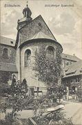 HILDESHEIM , 1000 Jähriger Rosenstock - Hildesheim