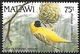 Malawi  - MNH - 1992 -Lesser Masked Weaver (Ploceus Intermedius) - Songbirds & Tree Dwellers