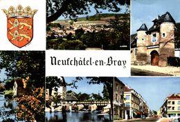 76 NEUFCHATEL-EN-BRAY - Neufchâtel En Bray