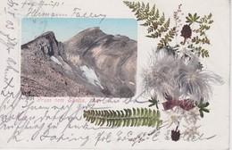 SUISSE 1903 CARTE POSTALE GRUSS VOM SÄNTIS - AR Appenzell Rhodes-Extérieures