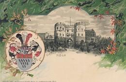 11379-GRUSS AUS KOLN-IN RILIEVO-FP - Saluti Da.../ Gruss Aus...