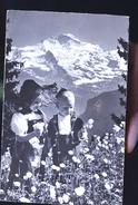 SUISSE BERNER OBERLAND JUNGFRAU                           ANNEES 1950 - Suisse