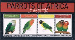 Bloc Sheet Oiseaux Perroquets Birds Parrots Macaws Neuf  MNH **  Sierra Leone 2014 - Parrots