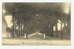 Sint-Joris-ten-Distel   *  Kasteeldreef - Beernem