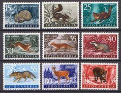 Yugoslavia MNH Set - Stamps