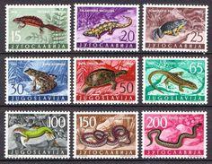 Yugoslavia MNH Set - Reptiles & Amphibians