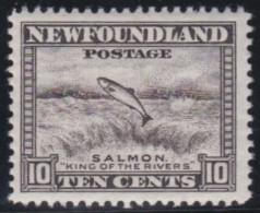Newfoundland        .   SG   .     215           .      **      . Postfris     .   /   .  MNH - Newfoundland