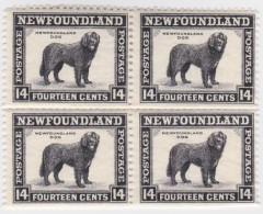 Newfoundland        .   SG   .     216    Bloc Of 4         .      **      . Postfris     .   /   .  MNH - Newfoundland