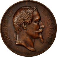 France, Medal, Napoléon III, Société D'Agriculture De Lisieux, 1868, Barre - France