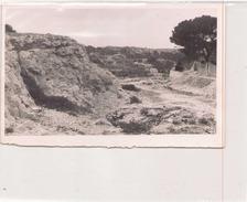 PHOTO  NON LOCALISEE 18 X 12 CM - Lieux