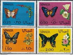 Somalië  Butterflies - Vlinders