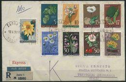1958 Jugoslavia, Fiori Flora Jugoslava Su Busta, Serie Completa - 1945-1992 Sozialistische Föderative Republik Jugoslawien