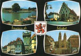 B41542 Souvenir De Sélestat - Francia