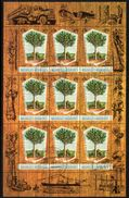 New Hebrides 1969 Timber Industry Sheetlet Of 9, Used, SG 135 - English Legend