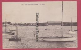56 - LA TRINITE SUR MER--La Rade----cpsm Pf - La Trinite Sur Mer