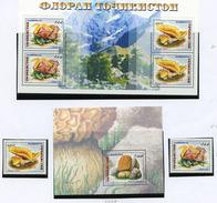 1999 - TAJIKISTAN - Mi. Nr.  163/164 BL 13/14 - NH -  (UP.70.11) - Tagikistan