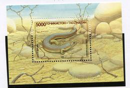 1995 - TAJIKISTAN - Mi. Nr.  BL 4 - NH -  (UP.70.10) - Tagikistan