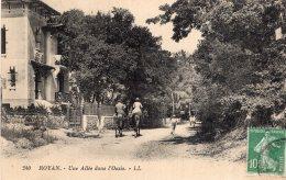 B41979 Royan, Une Allée Dans L'oasis - France