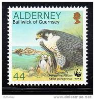Alderney Scott #146 MNH 44p Peregrine Falcon With Young Near Fort Clonque - Alderney