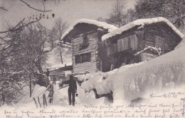 Winterlandschaft - Poststempel Thun * 18. 11. 1903 - BE Berne