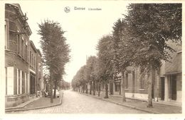Beersse / Beerse : Lindenlaan - Beerse