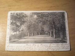 Marche-allée Du Monument, 1906, Timbre (C4) - Marche-en-Famenne