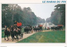 HIPPISME - HARAS - CHEVAUX - ATTELAGES - RETOUR DES ATTELAGES DE L'HIPPODROME - CPM - Chevaux