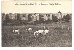 SAINTE SABINE - Le Barrage De Chazilly - La Digue - France
