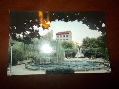 B672  Mieres Spagna Giardini Cm14x9 Viaggiata - Espagne